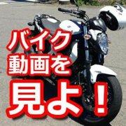 バイク動画を見よ!