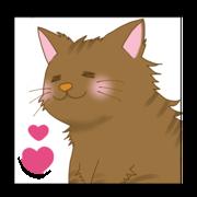 愛猫 『みーた』 の猫ブログ。