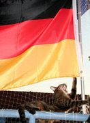 ドイツ語とドイツにまつわるお話