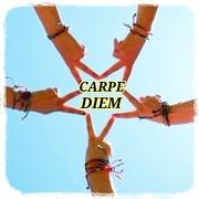 CARPE DIEM〜乳癌(トリネガなので治療済み)〜