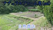 ナチュラルファーム菜(sai)