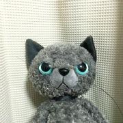 猫の凶暴化 体験談
