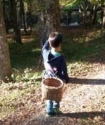 週末フィールダーの野遊び日記