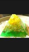 Lotus ☆日々のオラクル&オルゴナイト☆
