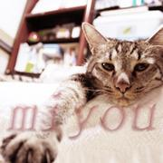 Miyou's-photograph