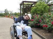 障害者に行ける日帰りの旅