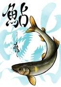 矢作川の鮎