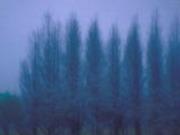 七つ森木葉舎