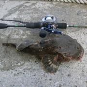 無節操釣師TKさんのプロフィール