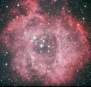 夜空の星狩り