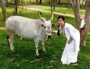 インド在住サンスクリット語講師みちかさんのプロフィール