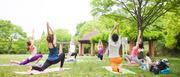 yoga-shukla(ヨガ シュクラ)さんのプロフィール