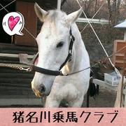 猪名川乗馬クラブのブログ