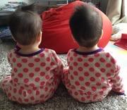 双子(一卵性双生児)親バカ日記