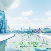 食べて歩いて暮らしてシンガポール