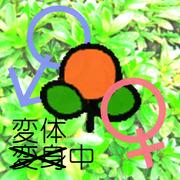 男→(変体中)→女 婦婦♀×♀閲実帖