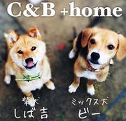 C & B +home