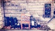 WAN LOVE
