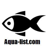 アクアリスト.com 初心者におすすめのブログ