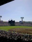 ピチテクの野球ブログ  〜Pitching Technology〜