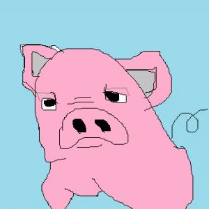 子豚のココのお勧め商品