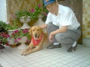 愛犬リキへの想い〜ケン〜チビ