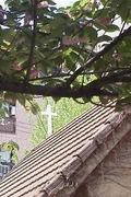 大阪東教会礼拝説教ブログ
