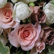 花&インテリア デコ ーDesign&Deco−