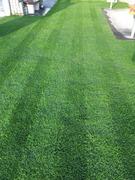 芝生のBLOG