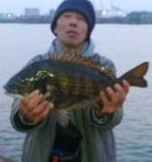 大阪湾岸ヘチ釣りのキビレとチヌ