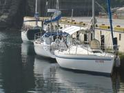 REDSUNのヨット記録
