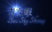 青空蝦 Blue Sky Shrimp