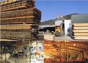 木材・新築・リフォーム・住宅設備・外構の坂矢木材