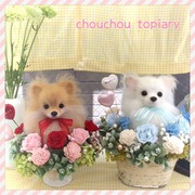 chouchou topiaryのブログ