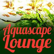 Aquascape Lounge