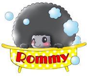 わんちゃんの美容室「Rommy」の日常