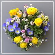 お花大好き花の子ガーデニング