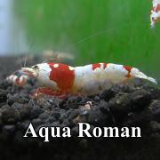 AQUA-ROMAN (アクア浪漫)