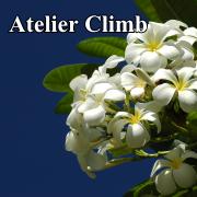 アトリエ・クライム Atelier Climb