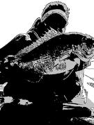 Nagoya Fishing Junkie
