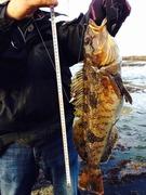 サラリーマンアングラーYの釣果管理