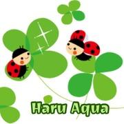 Haru Aqua
