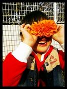 発達障害(知的障害)の花とGIDパパの記録