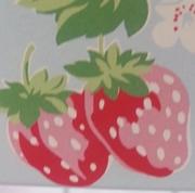 bluestrawberry212東方神起鹿虎