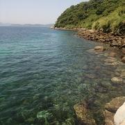 五島列島 椛島ブログ
