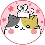 ハルコ オフィシャルブログ