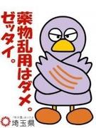 埼玉多肉ブログ