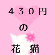 430円の花猫
