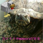 カメキチとRinominのまったりマイクラPE☆