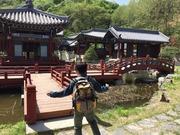 韓国〜地方・グルメ・コスメ大好き〜